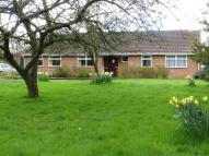 3 bed Detached Bungalow in YO23