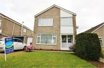 4 bed Detached property to rent in The Parkway, Willerby...