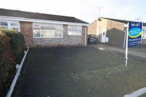 Semi-Detached Bungalow in Winchester Close...