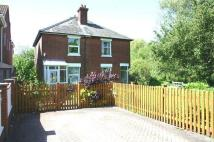 1 Meadow View semi detached house to rent