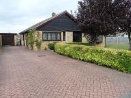Detached Bungalow to rent in Highfields, Lakenheath...
