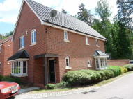 4 bedroom Detached home to rent in Walton Way, Brandon, IP27