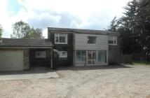Detached house to rent in Croxton Road, Thetford...