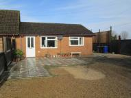 Semi-Detached Bungalow to rent in Rookery Drove, Beck Row...