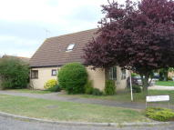 3 bed Detached Bungalow to rent in Oak Drive, Beck Row, IP28
