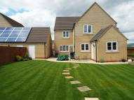 4 bed Detached house to rent in Chicheley Close, Soham...