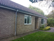3 bed Bungalow in CHURCH LANE, Newmarket...