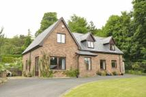 Detached property for sale in Longtown Road, Brampton