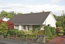3 bed Detached Bungalow in Bow Holm, Canonbie
