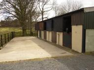 Equestrian Facility home for sale in Chaytor Terrace South...