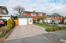 3 bedroom semi detached house for sale in Pasture Hill Road...