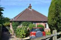 2 bed Detached Bungalow in Wivelsfield Road...