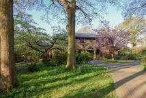 5 bed Detached house for sale in North Common Road...