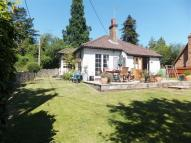 Cottage to rent in Ightham