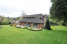Detached home to rent in Sevenoaks