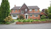4 bed Detached home in Sevenoaks