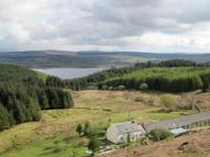 Creag Farm Land