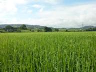 Land in Land At Inchmore for sale