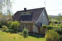 Detached Bungalow for sale in Bucklands Lane, Nailsea,