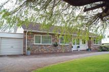 Detached Bungalow for sale in Tickenham Road, Tickenham