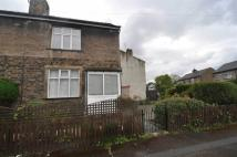 Halstead Place semi detached property to rent