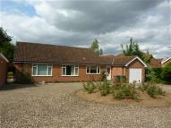 3 bed Bungalow to rent in Beverley Road, Driffield,