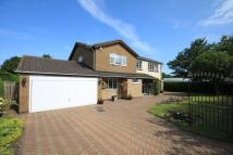 Detached property in Earnshaw Way...