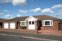 4 bedroom Detached Bungalow in Well Ridge Close...