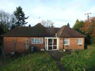 2 bedroom Detached Bungalow to rent in Tree Top, Stokes Hill...