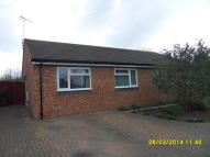 Semi-Detached Bungalow to rent in Newtown Road...