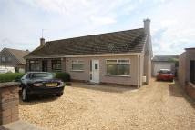 3 bed Semi-Detached Bungalow for sale in Cairngorm Crescent...