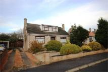 3 bed Detached property in Lady Nairn Avenue...