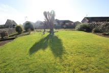 2 bed Detached Bungalow in Ashgrove Terrace...