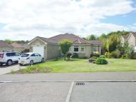 Detached Bungalow to rent in Beechwood Drive...