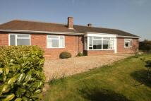 Detached Bungalow in Knapp, North Curry...