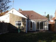 Semi-Detached Bungalow to rent in 11 Arethusa Road...