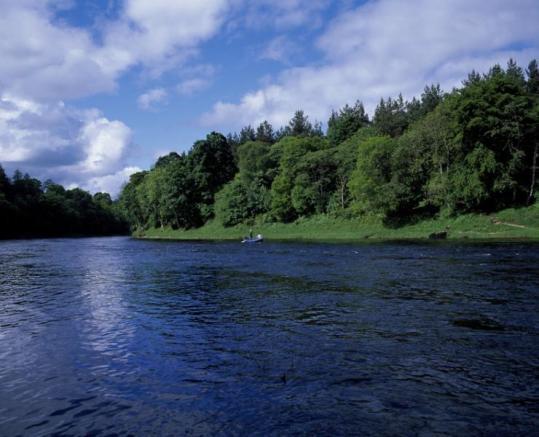 Stobhall Fishings