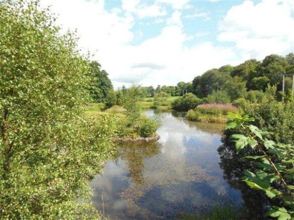 Plot 2 Pond