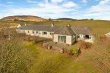 Bungalow for sale in East Balloch Farm...