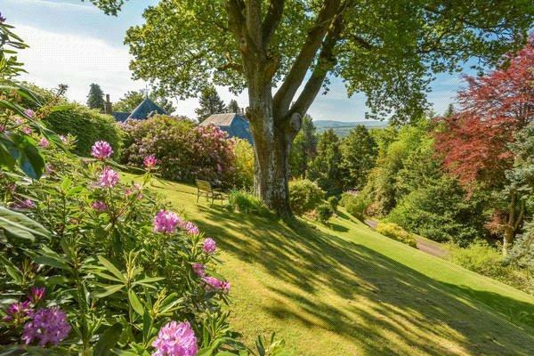 Gardens / View