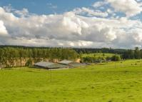 Detached home for sale in Ballathie Farm (Lot 1)...