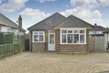 Francis Close Detached Bungalow for sale