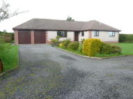 4 bed Bungalow in New Mains Farm, Reston...