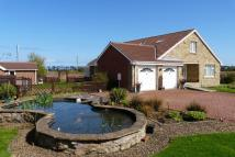 Detached house in Bamburgh Court, Chathill...