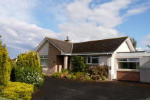 Cornhill Road Detached Bungalow for sale