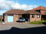 Bungalow for sale in Eildon View, Tweedmouth...