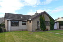 3 bed Detached Bungalow in The Pastures, Tweedmouth...