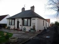 Detached Bungalow for sale in Main Street, Horncliffe...