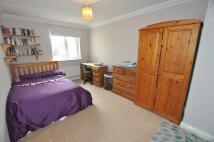 Castleden Way House Share
