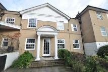 Chelmsford Road Apartment to rent